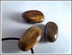 Kivettynyt puu riipuskivi, ovaali/pisara