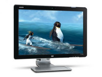 HP Pavilion w2448hc VA-panel HDMI webcam