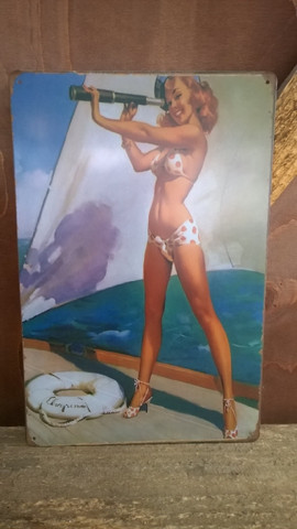 Peltitaulu Bikinityttö
