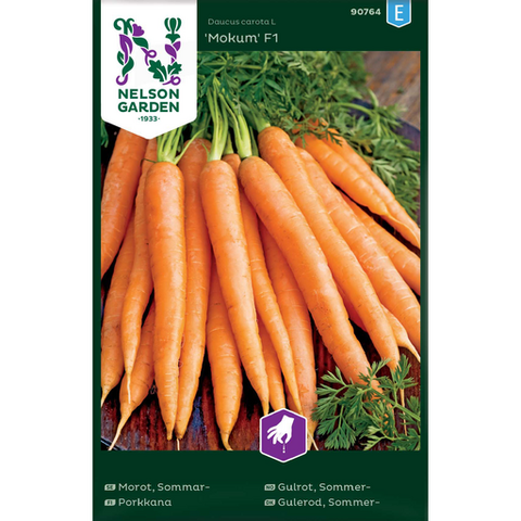 Porkkana , Kesä- 'Mokum' F1