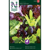 Salaatti, Baby Leaf mix