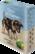 Säilytyspurkki XL Dogs And Puppies