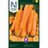 Porkkana , Talvi- 'Chantenay Red Cored 3'