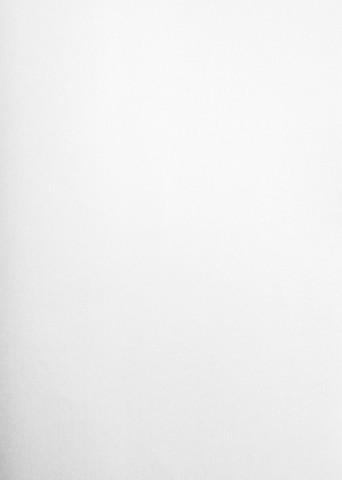 Helmiäispaperi, valkoinen hopeahohto