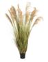 EUROPALMS Chinese Silvergrass, Artificial, 180cm