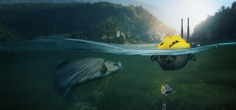 Chasing F1 - Digitaalinen kalakaveri!