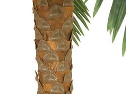 EUROPALMS 300cm Phoenix palm deluxe, artificial plant