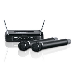 LD Systems ECO 2X2 HHD 1 Wireless Microphone System