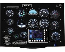 VRinsight - ProPit