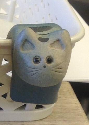 Kattilavahti kissa sininen