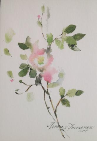 Kukkaoksa, Minna Immosen postikortti