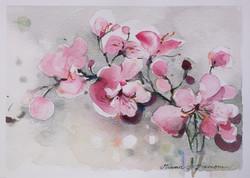 Omenankukkia juliste 70 x 50