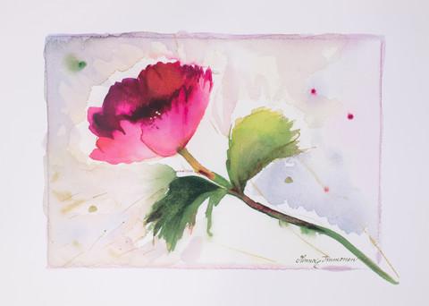 Punainen kukka 70 x 50 cm