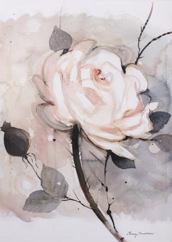 Valkoinen ruusu koko 50 x 70