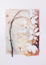 Valkoinen kukkaoksa 50 x 70