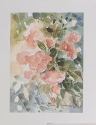 Vanha Roosa kukka A4