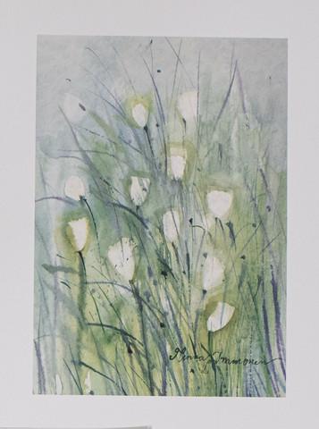 Valkoisia kukkia A4