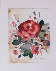 Punainen ruusu A4