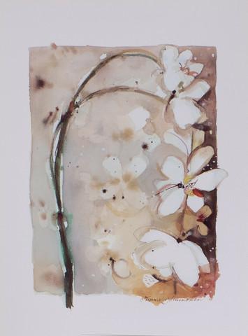 Valkoinen kukkaoksa A4