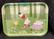 Moomin summer green tarjotin