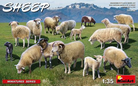 Sheep, 1:35