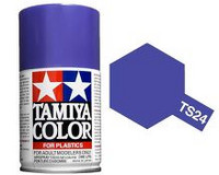 TS-24 Purple 100ml