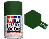 TS-43 Racing Green 100ml