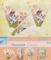 3D Stanssattu Pyramidikuvapakkaus, Lajitelma