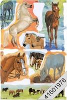 Kiiltokuva, Hevoset #1