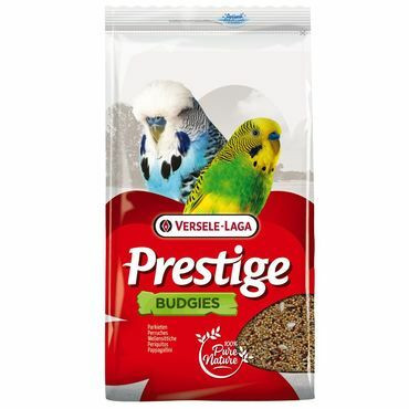 Versele-Laga Prestige, undulaatti, budgies