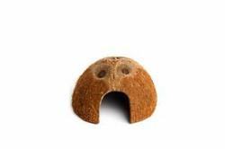 Komodo kookoksen puolikas, piilo, 9cm
