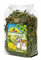 Jr-Farm Voikukka kuivattu 100g