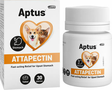 Aptus Attapectin, 30tabl.