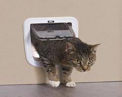 Basic kissanluukku oveen 21 x 22 cm valkoinen