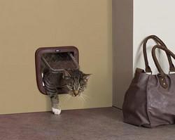 Basic kissanluukku oveen 21 x 22 cm ruskea
