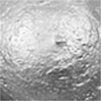 A-Color, akryylimaali, 03, metallihopea, 500ml