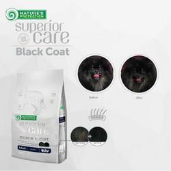 Black Coat, SIIPIKARJA, All Breeds