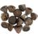 Eukalyptuksen kävyt, 25g/pkk