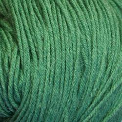 Kirjo-Pirkka Vaalea vihreä