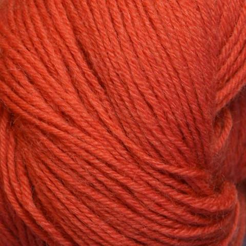 Kirjo-Pirkka Oranssi