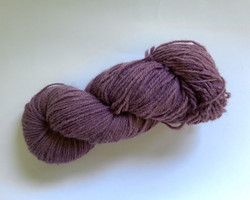 Violetti villalanka