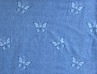 Denim Butterflyes, Stretch College