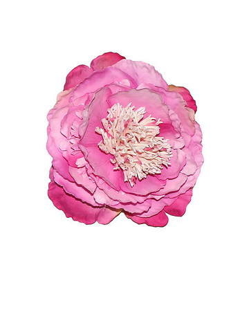 Large Peony Hair Flower