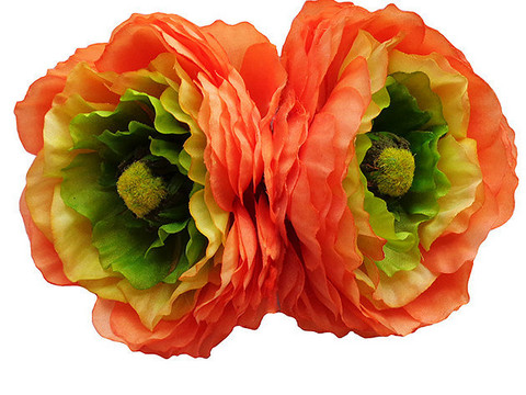 May Double Ranunculus