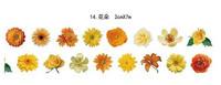 Sunny Flowers - washiteippi