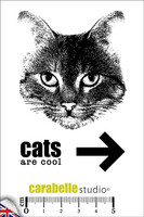 Carabelle Studio: Cats are cool