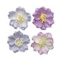 Scrapberry: Gardenia Mix  - kukkapakkaus