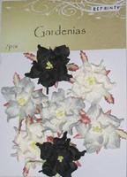 Reprint: Gardenias Winter  - paperikukkapakkaus