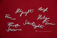 Brush Art Script:  Holly  - leikekuviopakkaus