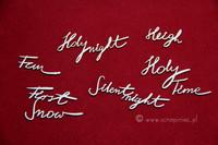 Brush Art Script:  Holly  - leikekuviopakkaus